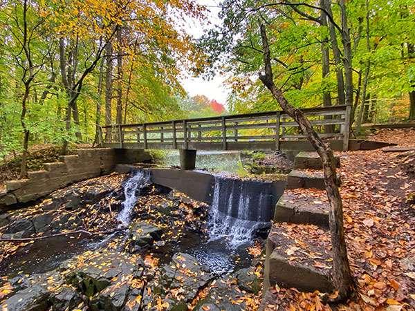 Rock Brook Nature Center