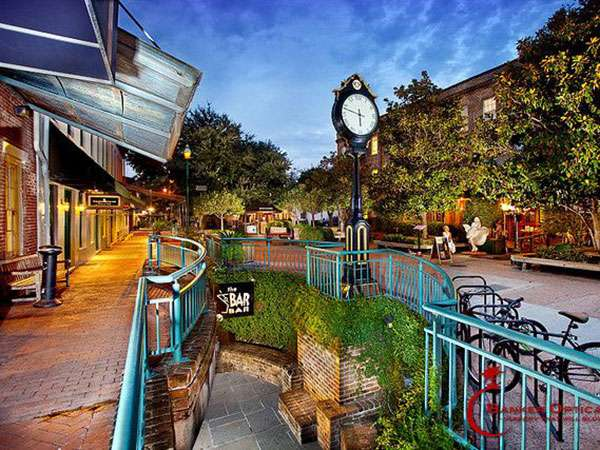 Savannah City Market